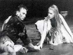 En midsommarnattsdröm (1989)