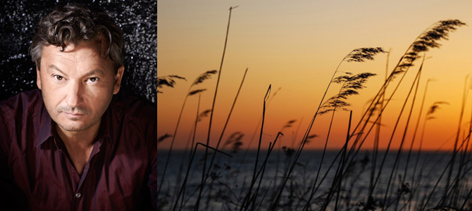 Sunset concerts – Glommens Fiskekrog