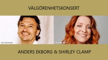 Permalänk till: Välgörenhetskonsert i Västerås domkyrka